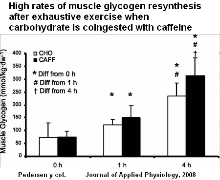 high rates muscle glycogen resynthesis after exhaustive exercise Glycogen in muscle possible rate of conversion to blood glucose (high caffeine following exhaustive exercise, their glycogen stores tend to.